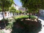 1988 von der jüdischen Gemeinde gespendete Orangenbäume (18). Die 18 repräsentiert in der kabbalistischen Tradition frieden und langlebigkeit. Ein Baum verschwand allerdings vor geraumer Zeit so das jetzt nur noch 17 da sind.